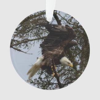 Ornamento Águia americana de Alaska EUA