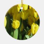 Ornamento amarelo das tulipas