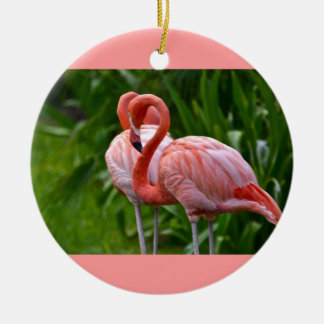 Ornamento americano do flamingo do pássaro animal