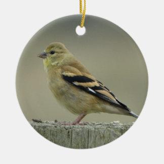 Ornamento americano do Goldfinch