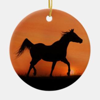 Ornamento árabe bonito do cavalo