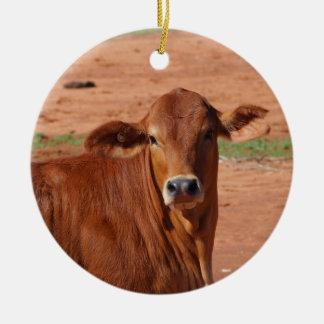 Ornamento australiano do gado