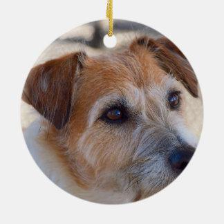 Ornamento bonito do cão