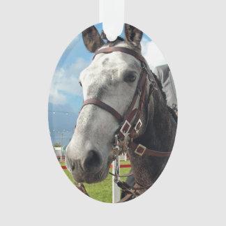 Ornamento Cavalo puro da raça