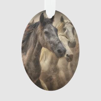 Ornamento Cavalos selvagens