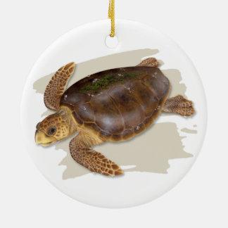 Ornamento cerâmico da tartaruga de mar da boba
