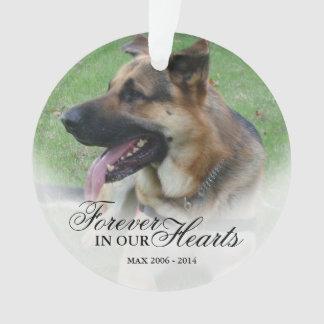Ornamento Criar um memorial do nome e do animal de estimação
