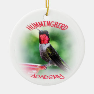 Ornamento da academia do colibri