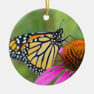 Ornamento da borboleta de monarca