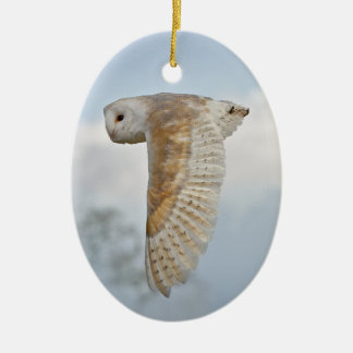 Ornamento da coruja de celeiro em vôo