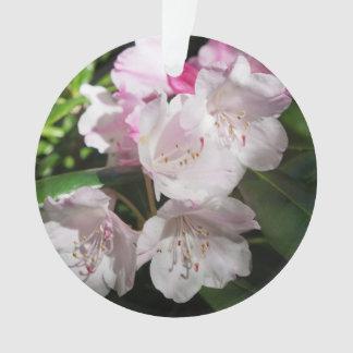 Ornamento da flor de cerejeira #2 de Sakura