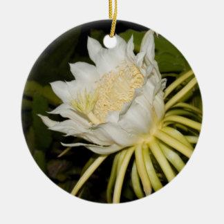 Ornamento da flor do círio de florescência de