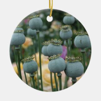 Ornamento de cabeças da semente de papoila