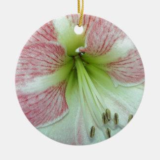 Ornamento De Cerâmica 104a o Amaryllis Apple floresce 2 abertos