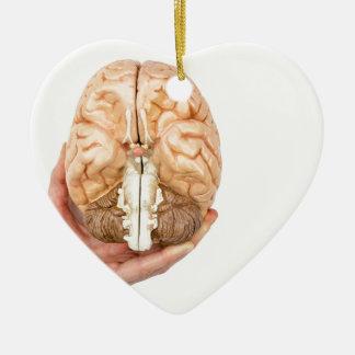 Ornamento De Cerâmica A mão guardara o cérebro humano modelo no fundo