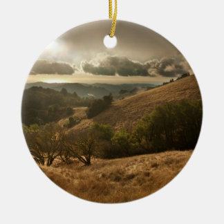 Ornamento De Cerâmica A primeira chuva da estação em Califórnia litoral
