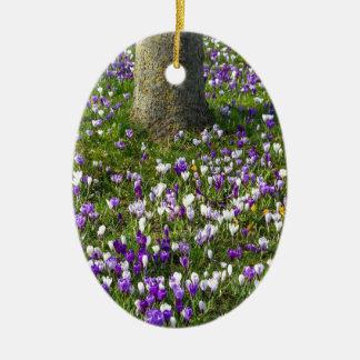 Ornamento De Cerâmica Açafrões do campo de flores na grama do primavera