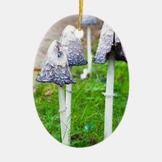 Ornamento De Cerâmica Agrupe cogumelos da tinta perto do trajeto de
