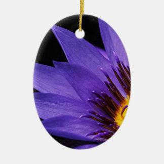 Ornamento De Cerâmica água-lírio