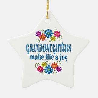 Ornamento De Cerâmica Alegria da neta