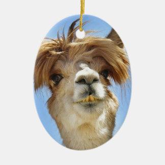 Ornamento De Cerâmica Alpaca com cabelo louco