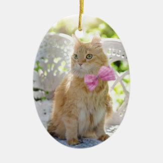 Ornamento De Cerâmica Animal de animal de estimação felino da luz do sol