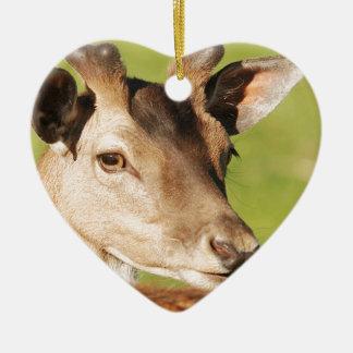 Ornamento De Cerâmica Animal selvagem esperto novo de Daniel