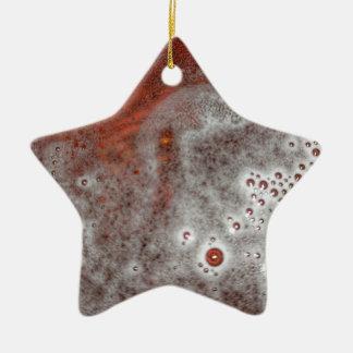 Ornamento De Cerâmica Apenas a espuma