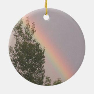Ornamento De Cerâmica Arco-íris acima de uma árvore de cedro