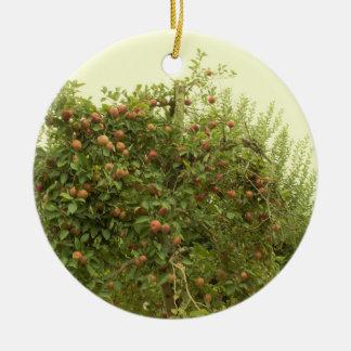 Ornamento De Cerâmica Árvore de Apple