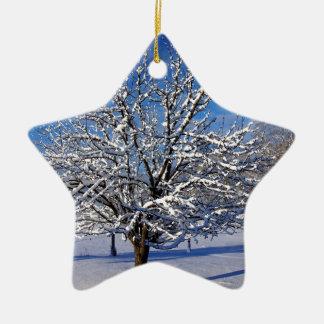 Ornamento De Cerâmica Árvore de Apple coberto de neve