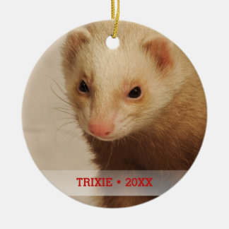 Ornamento De Cerâmica Árvore de Natal personalizada do nome da foto da