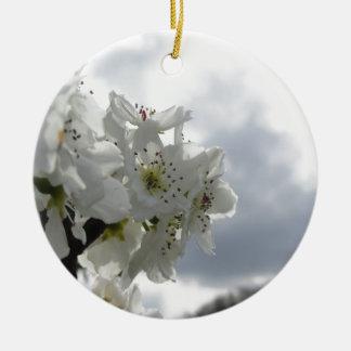 Ornamento De Cerâmica Árvore de pera de florescência contra o céu