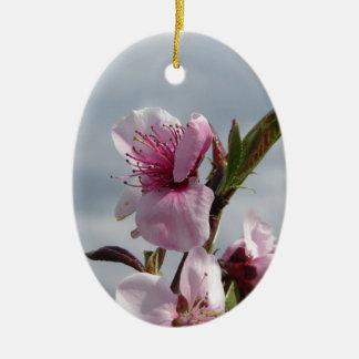 Ornamento De Cerâmica Árvore de pêssego de florescência contra o céu