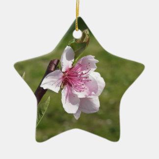 Ornamento De Cerâmica Árvore de pêssego de florescência contra o jardim