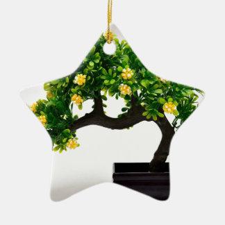Ornamento De Cerâmica Árvore dos bonsais