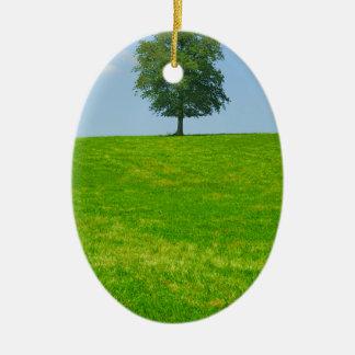 Ornamento De Cerâmica Árvore em um campo