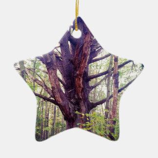 Ornamento De Cerâmica Árvore enevoada