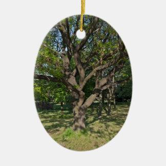 Ornamento De Cerâmica Árvore na primavera