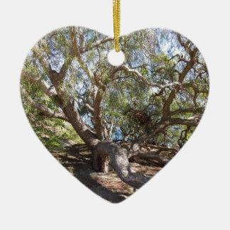Ornamento De Cerâmica Árvore não identificada na costa de Califórnia