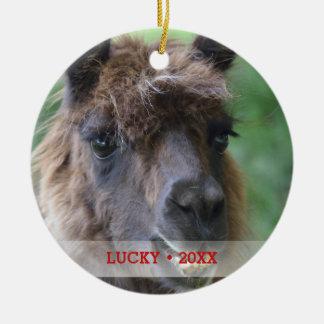 Ornamento De Cerâmica Árvore personalizada da foto do lama do animal de
