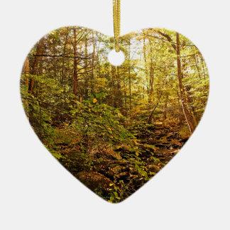 Ornamento De Cerâmica Árvores do outono no ribeiro de Willard