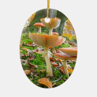 Ornamento De Cerâmica Assoalho da floresta com agarics e folhas de mosca