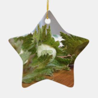 Ornamento De Cerâmica Avelã verdes frescas em uma mesa de madeira