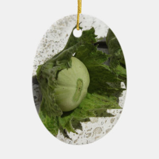 Ornamento De Cerâmica Avelã verdes frescas no assoalho