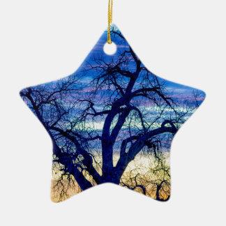 Ornamento De Cerâmica Azuis da manhã