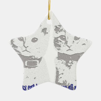 Ornamento De Cerâmica Bebês do gato