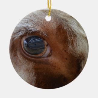 Ornamento De Cerâmica Beleza no olho da vaca do espectador