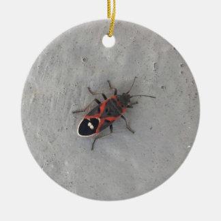 Ornamento De Cerâmica Besouro da pessoa idosa de caixa