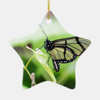 Ornamento De Cerâmica Borboleta de vidro da asa